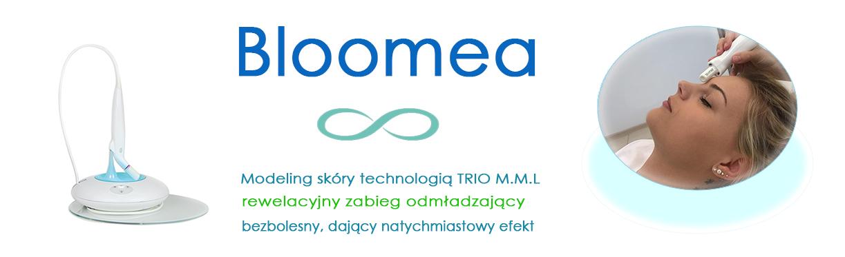 bloomea-slider